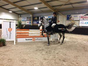 prijzen friese paarden